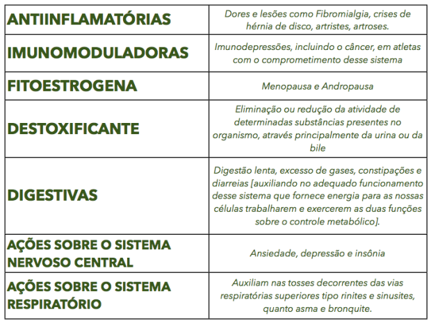 Fitoterapia.png