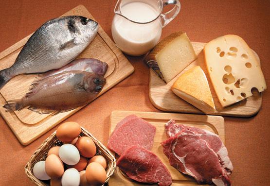 Alimentos_Fontes_de_Proteina