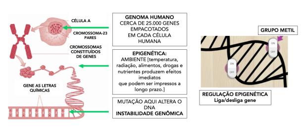 Toxinas e Ambiente 2