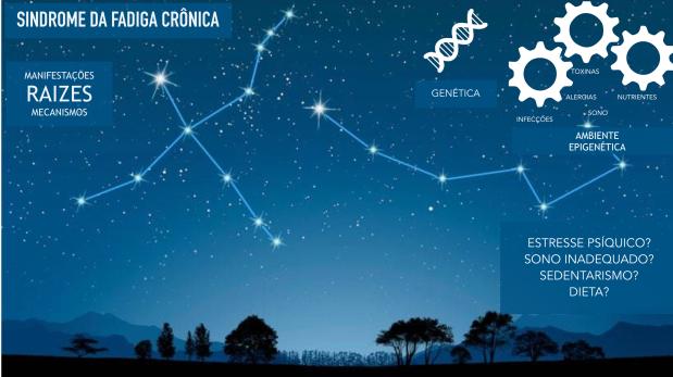 Fadiga Cronica 1