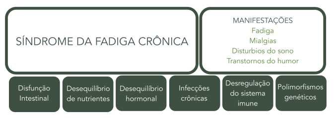 Fadiga Cronica 2